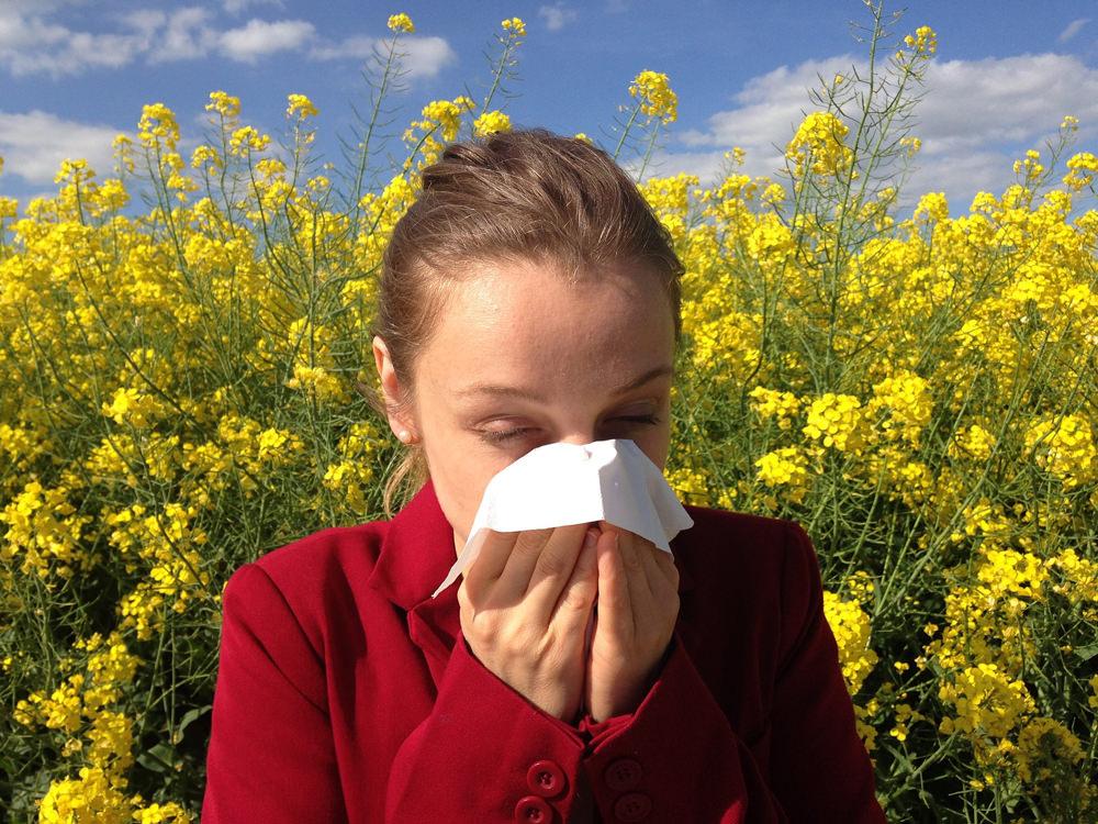 Allergietherapie mit Akupunktur