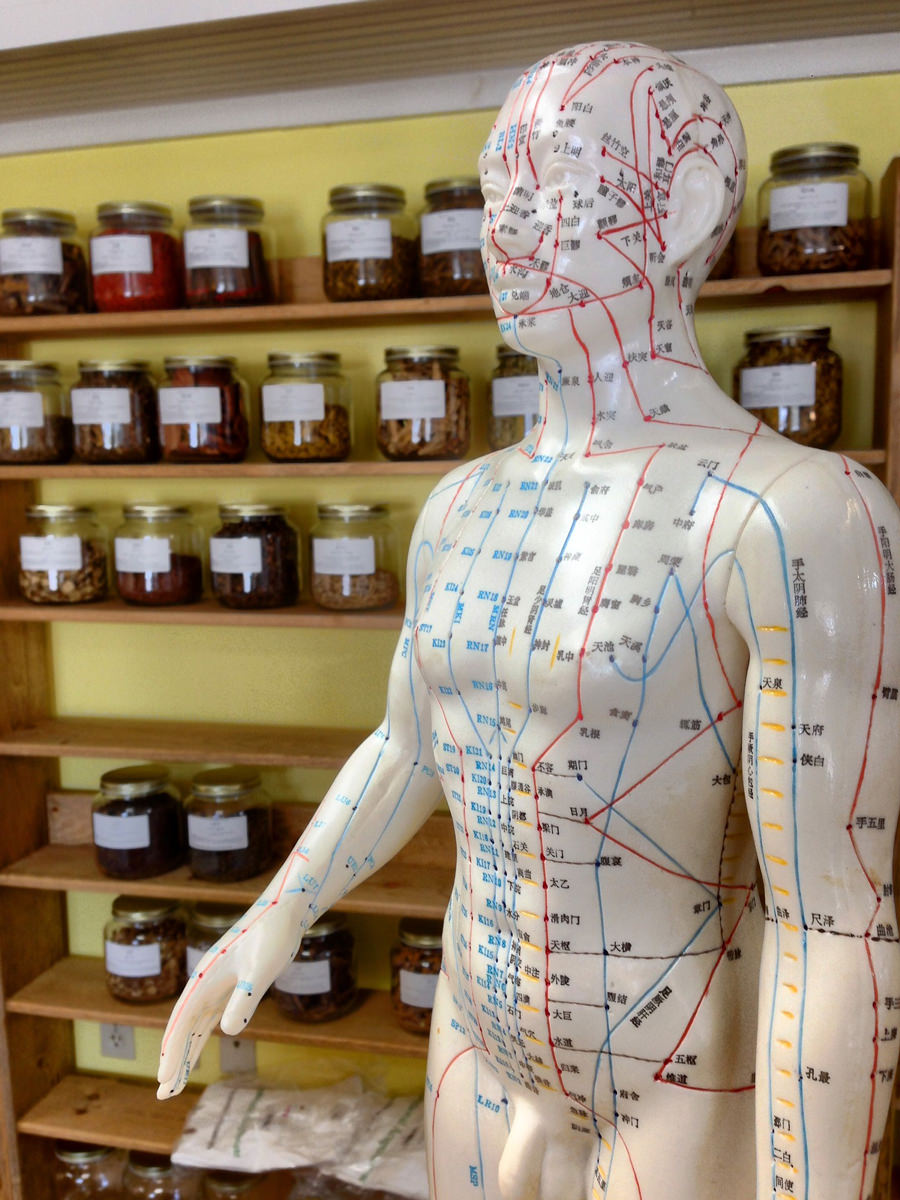 Klassische Japanische Akupunktur in Hamburg